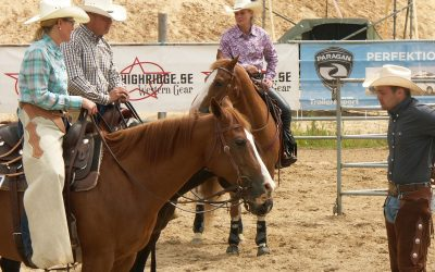 Horse Trainer and Instructor Insurance