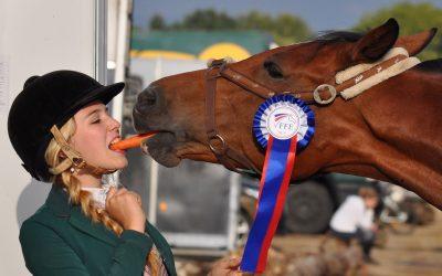 Equine Event Horseshow Insurance