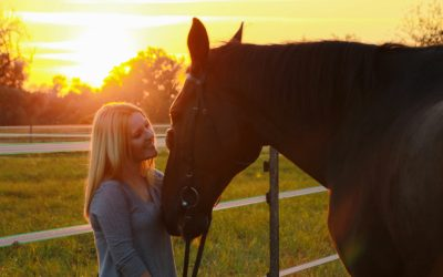 Horse Owner Liability Insurance