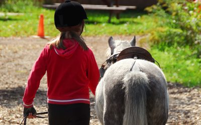 Horse Camp and Pony Party Insurance